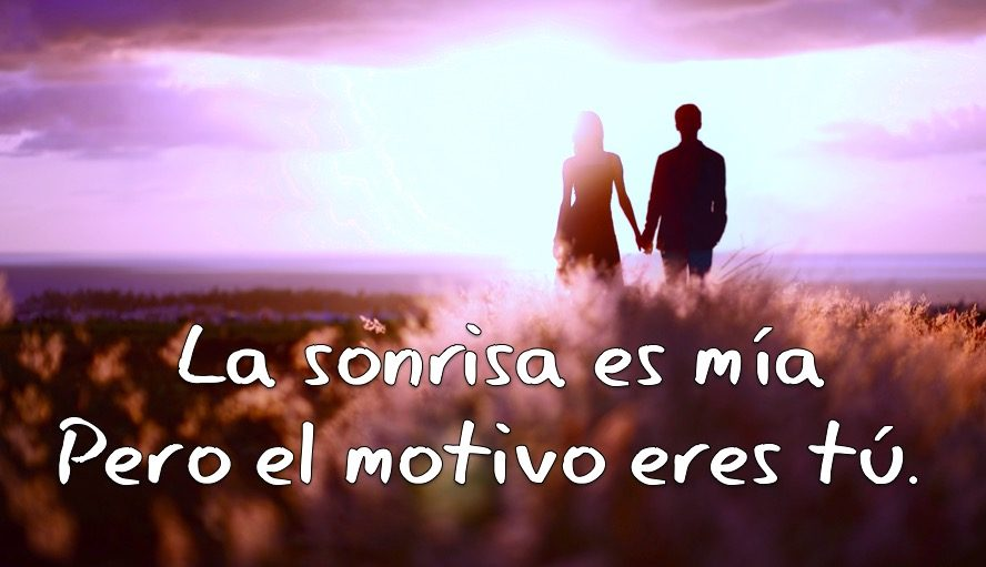 Best Frases Romanticas Gifs Find The Top Gif On Gfycat